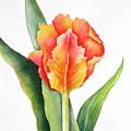 Orange Flame by Deborah Ronglien