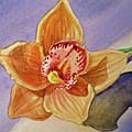 Orchid by Irina Sztukowski