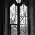 Palace Window by Lauri Novak