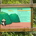 Panda Sign In Wolong Nature Reserve by Inga Spence