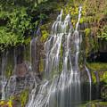 Panther Creek Falls by David Gn