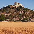 Parish Church Of Transfiguracio Del by Panoramic Images