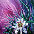 Passion Flower by Nancy Cupp