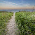Path To Pierport Beach by Twenty Two North Photography