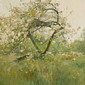 Peach Blossoms by Childe Hassam