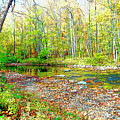 Pennsylvania Stream In Autumn, Digital Art by A Gurmankin