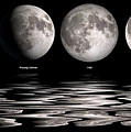 Phases Of The Moon by Jerry McElroy
