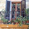 Pienza Balcony by Pat Purdy