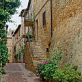 Pienza Street by Sally Weigand