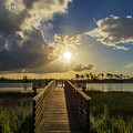 Pine Glades Sunset by Stefan Mazzola
