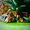 Pineapple by Bri Lou