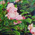 Pink Cascade by Elaine Booth-Kallweit