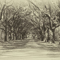 Plantation Road by Dale Powell