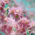 Plum Blossom - Bring On Spring Series by Andrea Anderegg