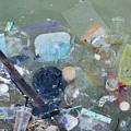 Polluted Dirty Water by Shay Levy