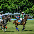 Polo Group 1 by Sarah M Taylor