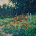Poppy Garden by Gene Cadore