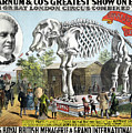 Poster, Circus, 1888.  by Granger