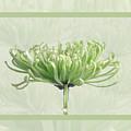 Pretty In Green by Eleanor Bortnick