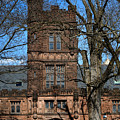 Princeton University East Pyne Hall Tower by Olivier Le Queinec