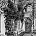 Princeton University Foulke Hall II by Susan Candelario