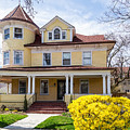 Prospect Park South Historic District by Kenneth Grant