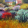 Provence In Bloom by Santo De Vita