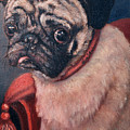 Pugsy by Portraits By NC