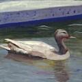 Quacker by Gloria Condon