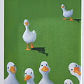 Quackers by Sheryl  Sutherland
