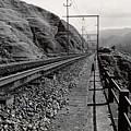 Railroad by Amarildo Correa