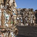 Recycling Facility by Paul Edmondson
