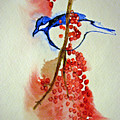 Red Berry Blue Bird by Patricia Arroyo