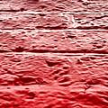 Red Brick Wall by Tom Gowanlock