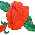 Red Rose, Oil Painting by Irina Afonskaya