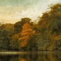 Reflecting October by Jessica Jenney