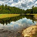 Reflection Of Nature by Joe  Ng