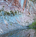 Reflections In Oak Creek Canyon by Sandra Bronstein