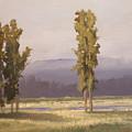 Reserve Cottonwoods by Dalas  Klein