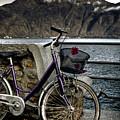 Retro Bike by Joana Kruse