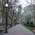 Rittenhouse Square In The Morning by Bill Cannon
