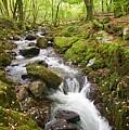 River Lyd On Dartmoor by Pete Hemington