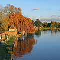 River Thames At Marlow by Tony Murtagh