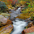 Rock Creek by Tim Reaves