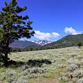 Rocky Mountain Foothills by Scott Kingery
