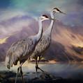 Rocky Mountain Sandhill Cranes by Janice Pariza