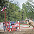 Rodeo  by Terry Brown