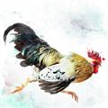 Rooster Running by Svetlana Foote