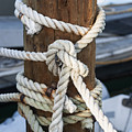 Rope Fence Fragment by Elena Elisseeva