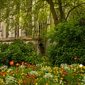 Rouen Abbey Garden by Lenore Holt-Darcy